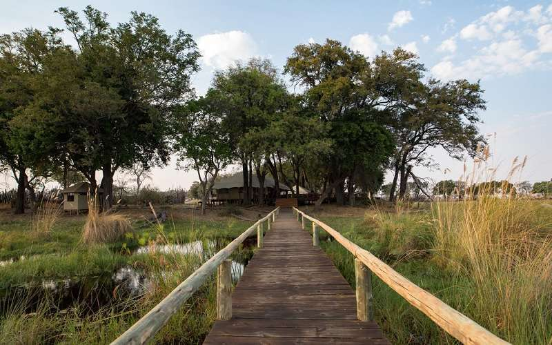 Duba Expedition Camp, Okavango Delta in Botswana