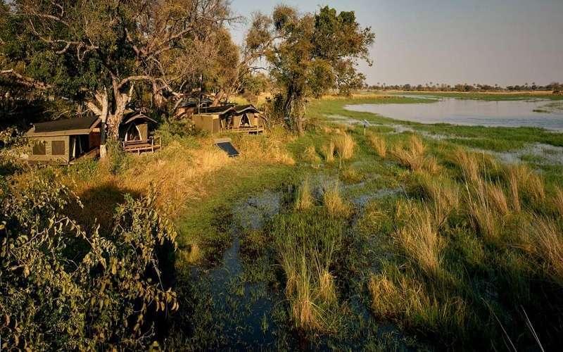 Oddballs Camp, Okavango Delta