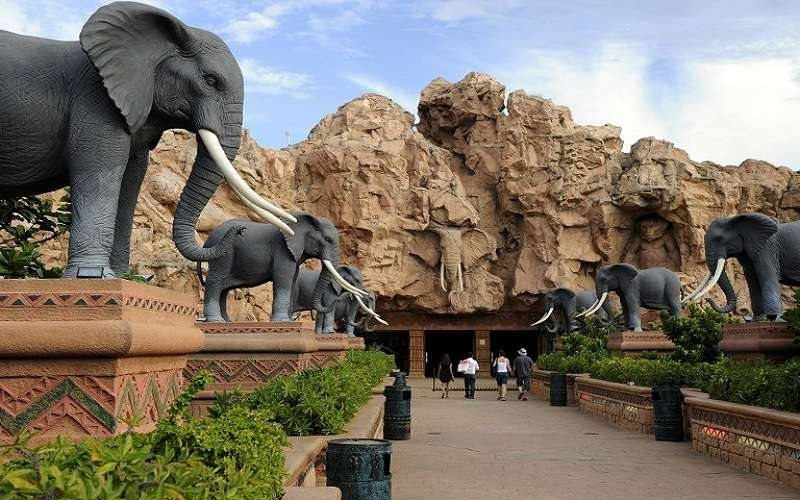 Sun City And Pilanesberg National Park Safari