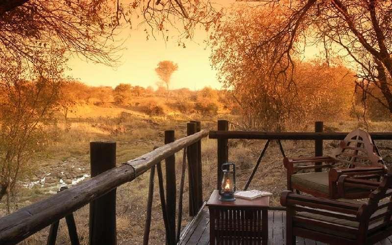 Madikwe River Lodge Madikwe Game Reserve South Africa