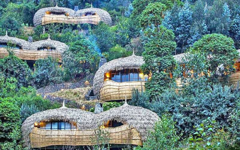 Wilderness Safaris Bisate Lodge