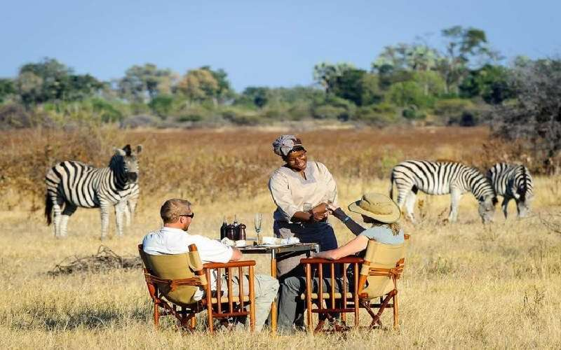 The Best of Botswana Tour