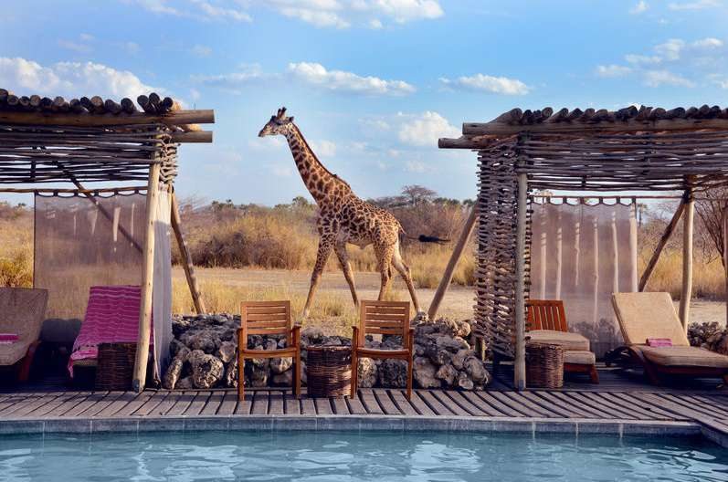 Chem Chem Tanzania 4 Night Breakaway Package