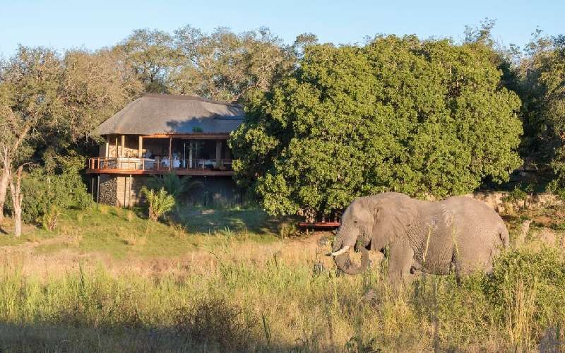 River Lodge, Sabi Sands Game Reserve