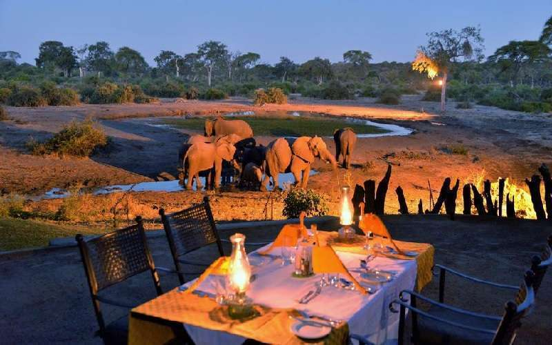 The Top 25 Botswana Safari Lodges
