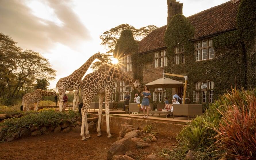 The Giraffe Manor, Kenya
