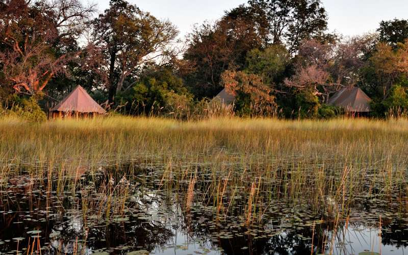 Kanana Luxury Tented Camp, Okavango Delta / Botswana