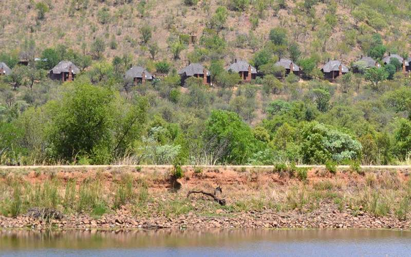 Mabalingwe Lodge in Nature Reserve