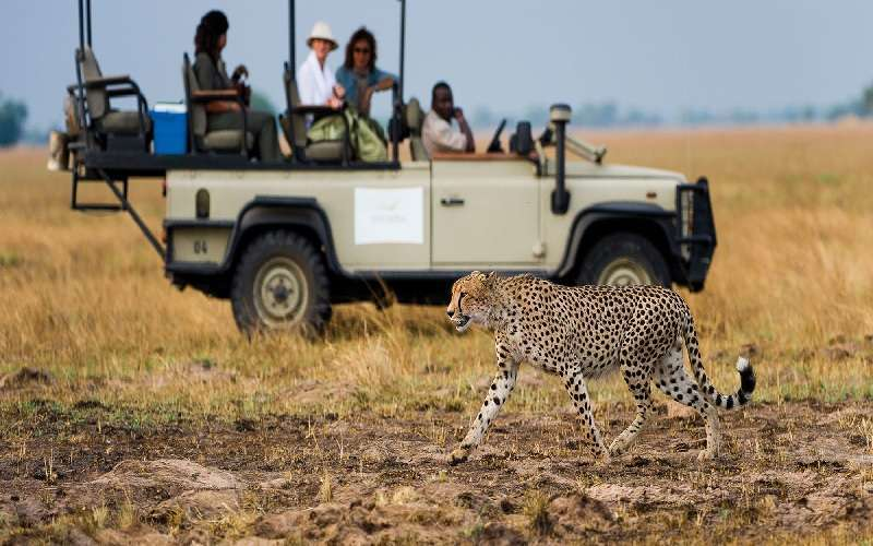 The Sanctuary Spafari Tour (Botswana, Zambia)