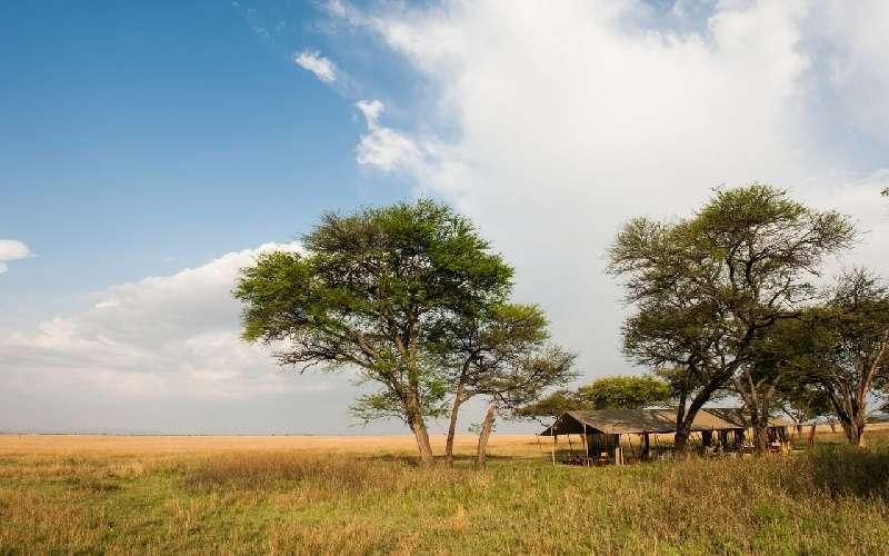 Serengeti Safari Camp in Tanzania