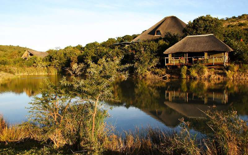 Bayethe Tented Lodge, Shamwari Game Reserve