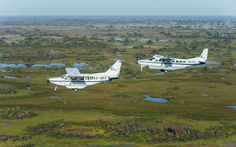 The Best of Botswana Fly-In Safari Tour